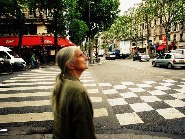 stripes_o_squares